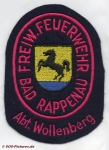 FF Bad Rappenau Abt. Wollenberg
